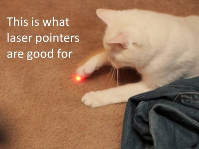 cat-and-laser-pointer-with-writing-400x300
